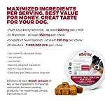 MAX Cranberry for Dogs - Cures & Prevents Painful UTI Urinary Tract Infections. Bladder Support Pills & Kidney Health. No More Antibiotics & Incontinence! D-Mannose & Probiotics Chews, Save on Vet 9