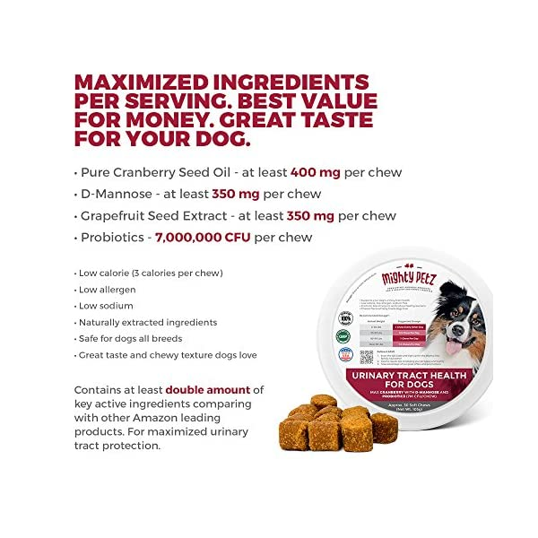 MAX Cranberry for Dogs - Cures & Prevents Painful UTI Urinary Tract Infections. Bladder Support Pills & Kidney Health. No More Antibiotics & Incontinence! D-Mannose & Probiotics Chews, Save on Vet 2