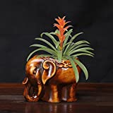 The elephant meat plant pots ceramic handicrafts