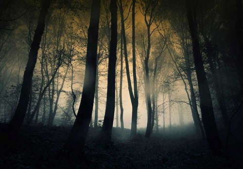wall26 - Dark and Ominous Forest - Wall Mural, Removable Sticker, Home Decor - 100x144 inches by wall26 (Image #2)