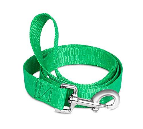 Internet's Best Nylon Dog Leash | Green | 4 Feet x 1 Inch | Pet Accessories