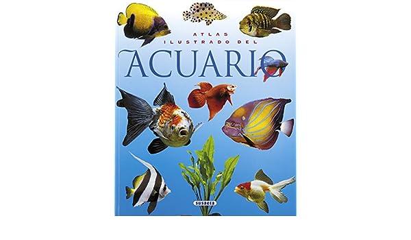Amazon.com: El acuario (atlas ilustrado) (Spanish Edition) eBook: Equipo Susaeta: Kindle Store