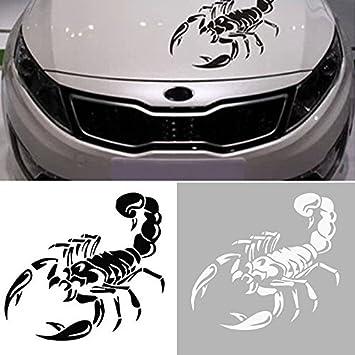 1 X Skorpion Scorpion Aufkleber Ca 40x20 Cm Auto Tuning Sticker Aufkleber Mit Montage Set Inkl Estrellina Montage Rakel Estrellina Glücksaufkleber Auto