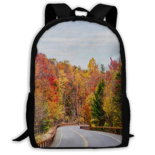 Backpack Autumn in The Hudson River Valley Womens School Backpacks Daypack