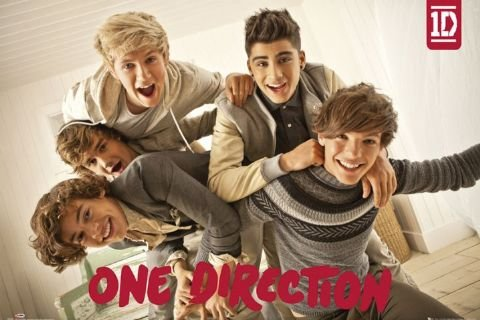 (24x36) One Direction Group Music Poster by Poster (Book Posters One Direction)