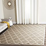 Safavieh Amherst Collection AMT420S Wheat and Beige Indoor/Outdoor Area Rug (8′ x 10′) Review