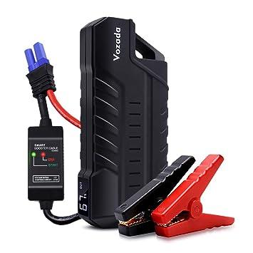 Amazon.com: Vozada - Batería portátil de 800 A de 12 V de ...