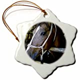 3dRose orn_49278_1 Portait of Arabian Horse Snowflake Porcelain Ornament, 3-Inch