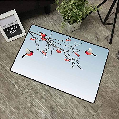 LOVEEO Indoor Doormat,Rowan Bullfinch Birds Flying and on Branches Winter Themed Graphic Design,with No-Slip Backing,20
