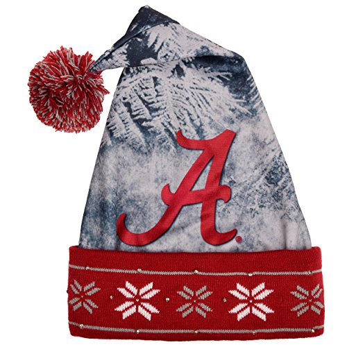 NCAA Light Up Santa Hat