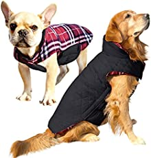 e0dafb69923cf The 25 Best Dog Winter Coats of 2019 - Pet Life Today