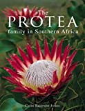 The Protea Family in Southern Africa, Colin Patterson-Jones, 1868723062