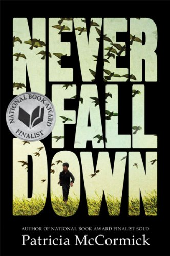 Never Fall Down: A Novel cover