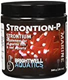 Brightwell Aquatics Strontion-P Dry Strontium Supplement, 300 grams