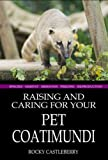 Raising And Caring For Your Pet Coatimundi