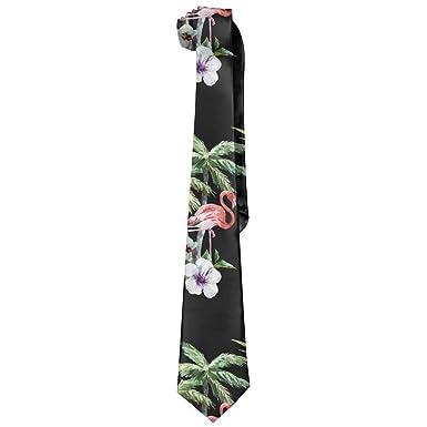 Amazon.com: Corbata de seda para hombre, diseño de flamenco ...