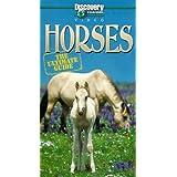 Ultiamte Guide: Horses