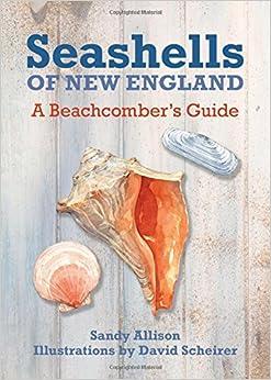 Seashells of New England: A Beachcomber's Guide
