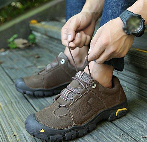 Marron Basses Trekking Hommes Outdoor Chaussures Hiver Marche Pour Chengyang Randonnée Sneakers De QsdhCtr