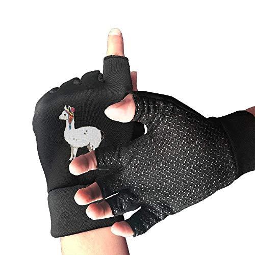 (Cute Llama Alpaca Half Finger Fingerless Gloves for Women Men Cycling Weightlifting Shooting Gloves)