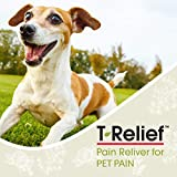 MediNatura T-Relief Pet Pain Relief with Arnica