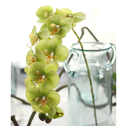 Outtop 28.34 Inch Orchid Artificial Flowers Bouquets Real Touch Fake Flower for Home and Wedding Decoration (Green)
