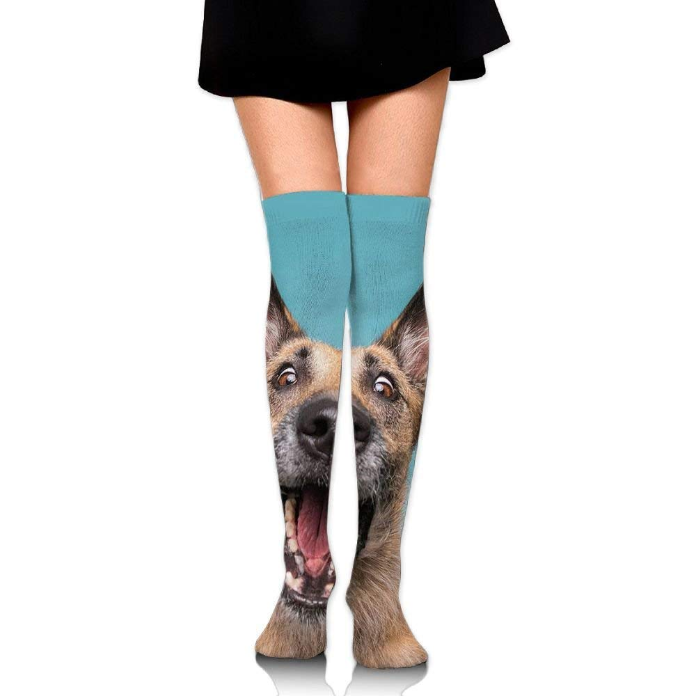 888d0585087 Amazon.com  Women Long Tube Dress Outdoor Socks Thigh High Over Knee  Hilarious Catch Treats Dog See Food Legging Slim Look Casual  Health    Personal Care