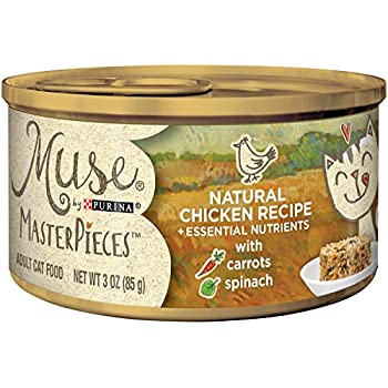 Amazon muse by purina natural chicken recipe adult wet cat muse by purina masterpieces natural wet cat food 24 3 oz cans chicken recipe forumfinder Image collections