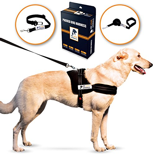 Padded Dog Harness Set: No More Struggling! Easy & Full Control With a Durable No-Pull Harness, Comfortable for Your Pet, Black - Small. Reflective & Washable. Includes a Leash and a Car Seat-Belt - D-ring Freedom Harness