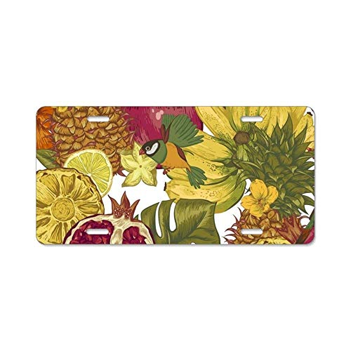 YEX Fruits Banquet License Plate with 4 Holes Novelty Car Licence Plate Covers Tag Sign
