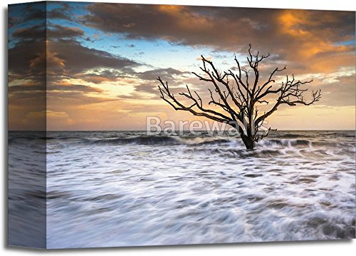Botany Bay Edisto Island Sc Boneyard Beach Sunset Landscape Charleston South Carolina East Coast Gallery Wrapped Canvas Art (8 in. x 10 - Bay Gallery South