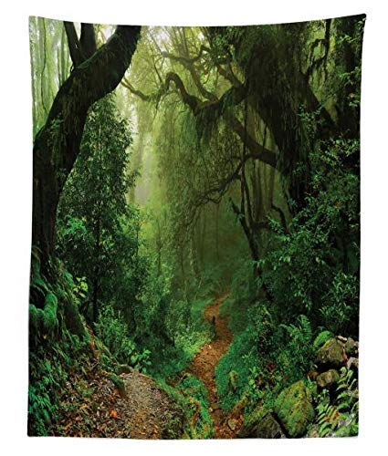 - Ambesonne Rainforest Tapestry Twin Size, Forest in Nepal Touristic Trekking Branches Misty Road Fresh Air Outdoors Theme, Wall Hanging Bedspread Bed Cover Wall Decor, 68 W X 88 L inches, Green Brown