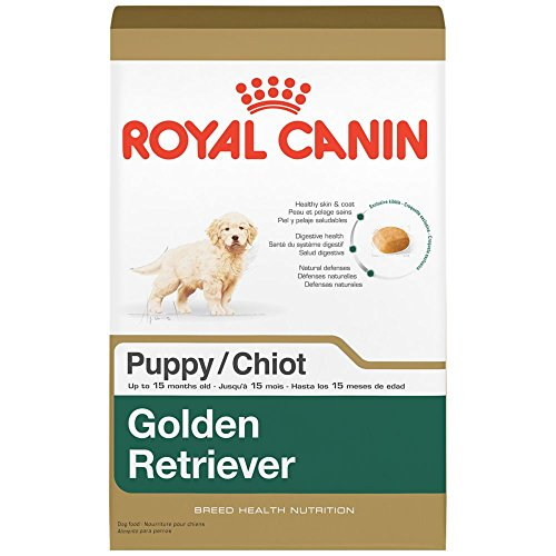 Durable Modeling Royal Canin Breed Health Nutrition Golden Retriever