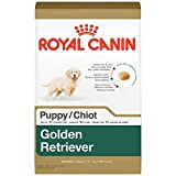 ROYAL CANIN BREED HEALTH NUTRITION Golden Retriever Puppy dry dog food, 30-Pound