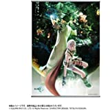 FINAL FANTASY XIII ウォールスクロールポスター ライトニング&スノウ