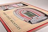 NCAA Ohio State Buckeyes 3D StadiumViews Picture