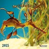 By Tushita Publishing Waterworld (Wonderful World) (150358) [Calendar]