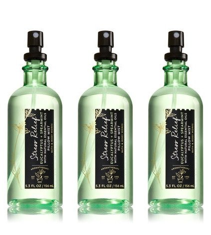 Bath & Body Works Aromatherapy Pillow Mist Eucalyptus Spearmint 3 Pack
