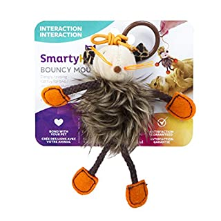 SmartyKat Bouncy Mouse Cat Toy Bungee Toy
