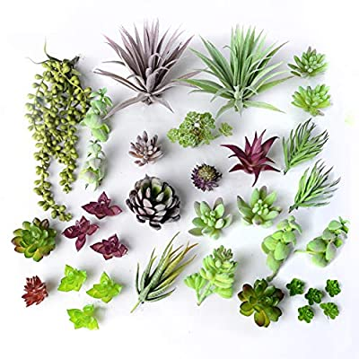30 Gorgeous Artificial Succulent Plants Curated by Designers for Cohesive Colors, Most Realistic Fake Succulent Plants Available, 5 Bonus Mini Filler Accent Pieces Included, Largest Set of Succulents