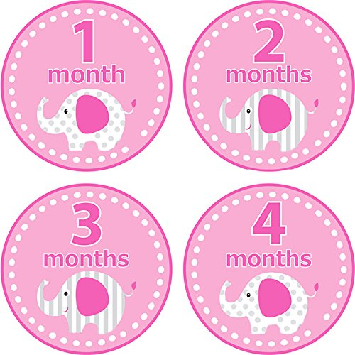 Home-organizer Tech Baby Month Stickers Cartoon Elephant Boy Girl 1-12 Monthly Milestone Sticker Best Birthday Shower Gift Party Photo Age Sticker by Home-organizer Tech