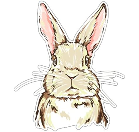 Stay At Home Bunny Color Vinyl Bumper Sticker Decal 5