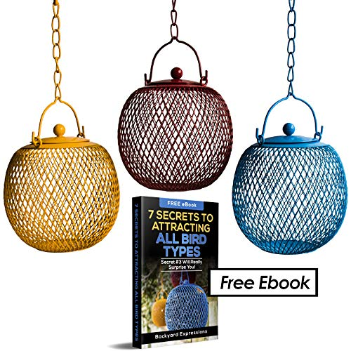 (Backyard Expressions - Set of 3 Squirrel Proof Bird Feeders for Outside - Bonus Ebook and Squirrel Proof Guide Included)