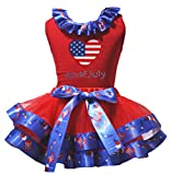 Petitebella America Heart 4th of July Red Shirt US Hat Petal Skirt Set Nb-8y (3-12 Months)