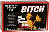 Magnetic Poetry - Bitch Kit - Words for