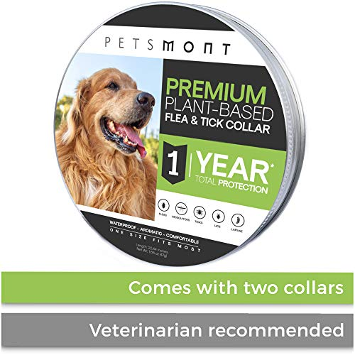 Petsmont Flea Collar for Dogs, Tick Collar for Dogs, Flea and Tick Collar for Dogs, Unique Plant Based Formula, Small to Extra Large, 1 Year Protection, Stone Gray Color