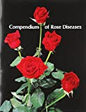 Compendium of Rose Diseases : New Edition Available, Horst, R. K., 0890540527