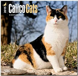 Calico Cats 2015 Wall Calendar
