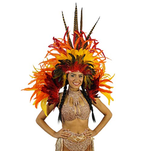 Fiery Feather Carnival Mardi-Gras Costume - Sexy Cosplay,Halloween, Parade Outfit Red