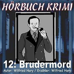 Brudermord (Hörbuch Krimi 12) Hörbuch